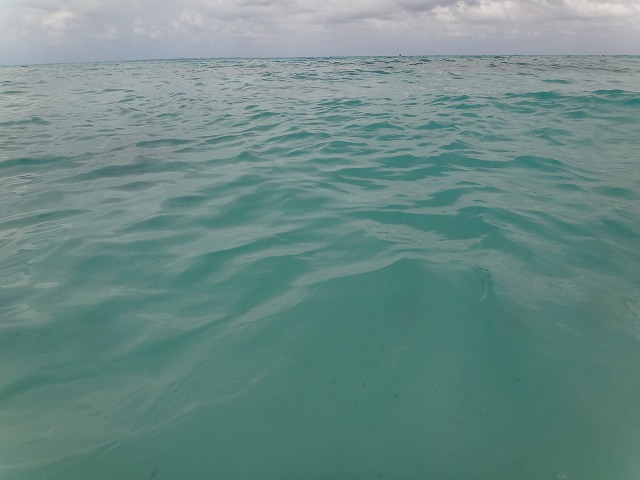 フィエスタ アメリカーナ グランド コーラル ビーチのプライベートビーチカリブ海カラー