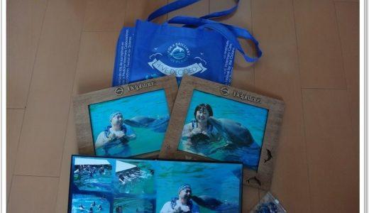 【カンクン】シェルハ海洋公園ツアーのドルフィンクルージング旅行記