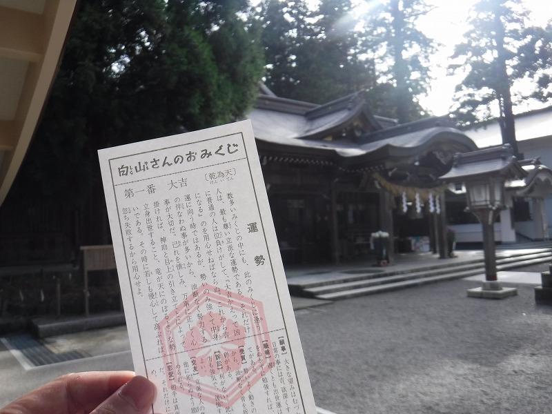 白山比咩神社で運試しのおみくじ