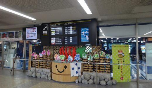 新千歳空港から大分空港|ANA直行便はなくマイル特典羽田経由にしてみた