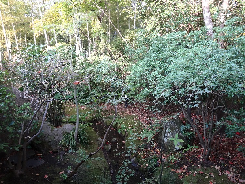 ゆふいん山荘わらび野「青林」お部屋からの庭園景色