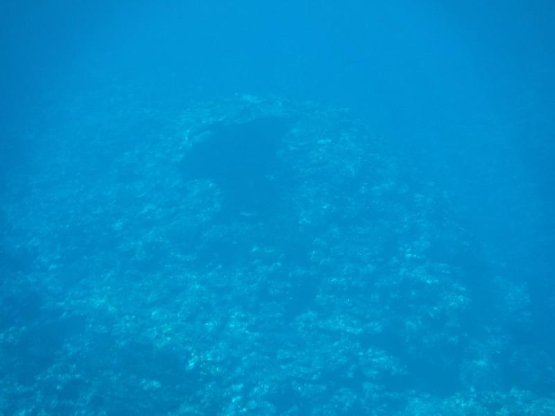 石垣島マンタシュノーケルおすすめショップ|ソライロ・マリンでマンタに遭遇13