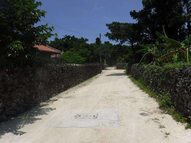 石垣島から竹富島半日観光、竹富島の町並み2