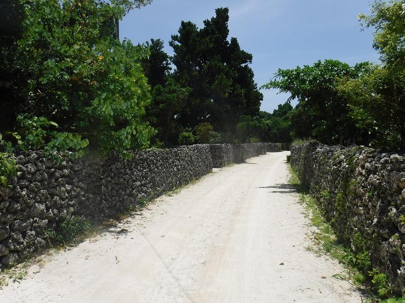 石垣島から竹富島半日観光、竹富島の町並み4