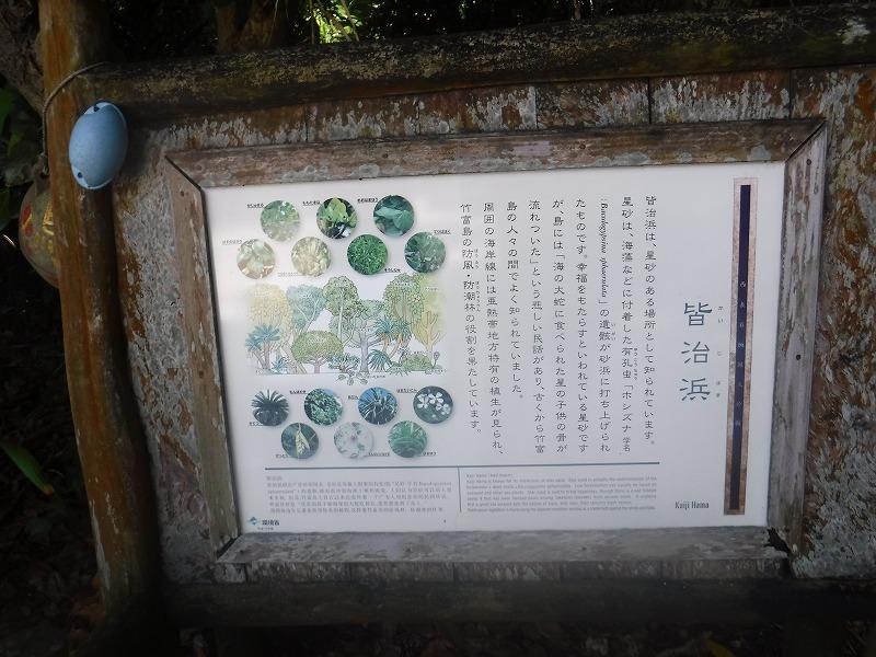 竹富島を電動レンタサイクルで島内観光8