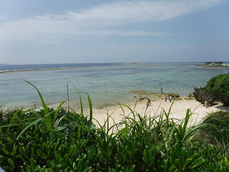 沖縄美ら海水族館観光12