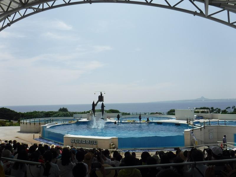 沖縄美ら海水族館観光11