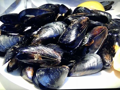カン マジョでオーダー_ムール貝の白ワイン蒸し