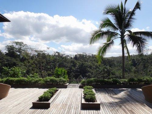 コマネカタンガユダ旅行記|ホテルのウッドデッキから森を眺める