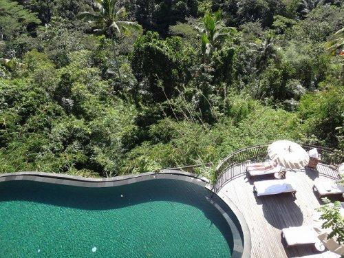 コマネカタンガユダ旅行記|ホテルのウッドデッキから眼下のセンタープールと森