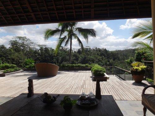 コマネカタンガユダ旅行記|ホテルから森の眺め