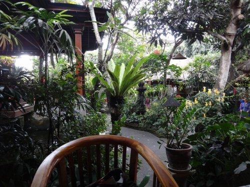 ウブドおすすめレストラン|カフェワヤン店内のお庭