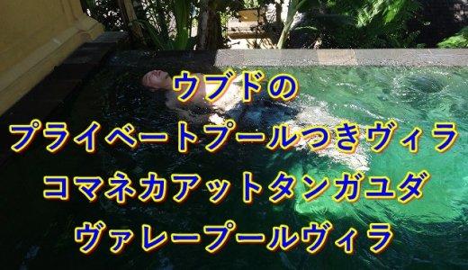 ウブドのプライベートプール付きヴィラ|コマネカアットタンガユダのお部屋プール
