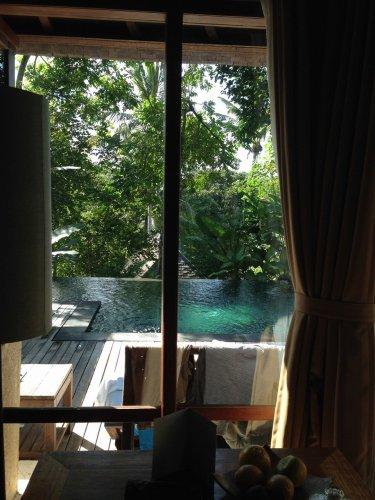 ウブドのプライベートプール付きヴィラ|コマネカアットタンガユダヴァレープールヴィラのプライベートプールをお部屋の中から見た1