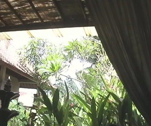 バリ島スパ|カップルおすすめ!ベルエアースパ_スパヴィラでタラソフットバスを受けて見える景色