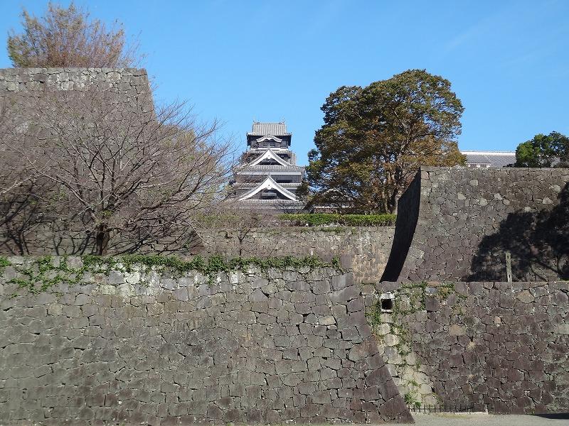 【熊本城復興祈願】熊本城_遠くに天守閣