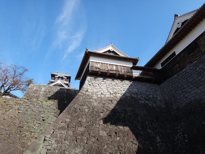 【熊本城復興祈願】熊本城_石垣と天守閣3