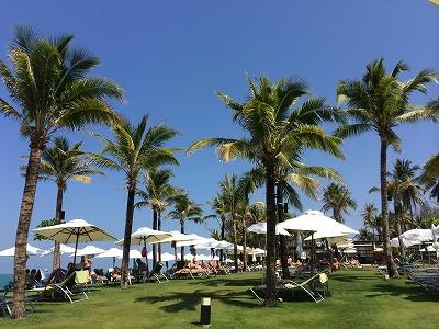 ザ・サンズ カオラック_ゴールデンサンズビーチにつながるホテル内芝生