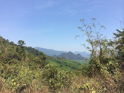 カオラックオプショナルツアー|AMエレファントトレッキング_象の背から見える景色
