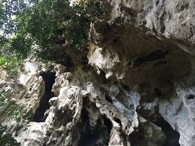 カオラックオプショナルツアー|PMバンブー筏川下り_風景4