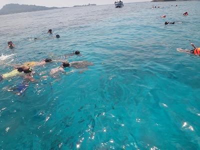 シミラン諸島ツアーアンダマン海シュノーケル_ウミガメに群がる外人さんたち