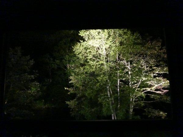 カムイの湯ラビスタ阿寒川森側の部屋_夜景1