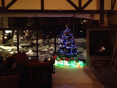 ラビスタ大雪山 夜のロビーラウンジ_クリスマスツリー