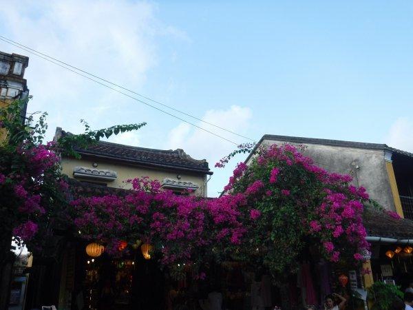 ホイアン旧市街観光_ホイアンの町並みと建物4
