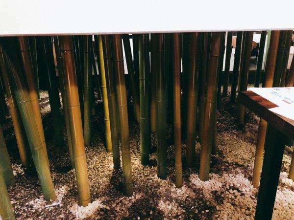 望楼NOGUCHI函館ブログ宿泊記【食事】夕食_2階食事処竹林CHIKURINの個室_中庭のの竹林風景