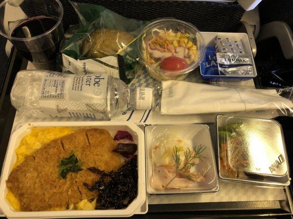 【メキシコ旅行】プエルトバジャルタの行き方_ANAヒューストン便_機内食ANAオリジナルとんかつ丼