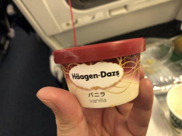 【メキシコ旅行】プエルトバジャルタの行き方_ANAヒューストン便_機内食デザート