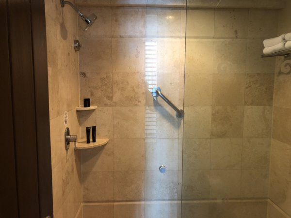 ハードロックホテルバリャルタのデラックスゴールドルーム_シャワー