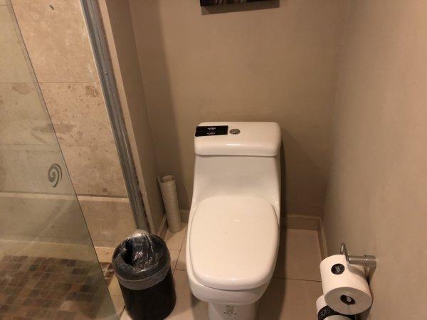 ハードロックホテルバリャルタのデラックスゴールドルーム_トイレ