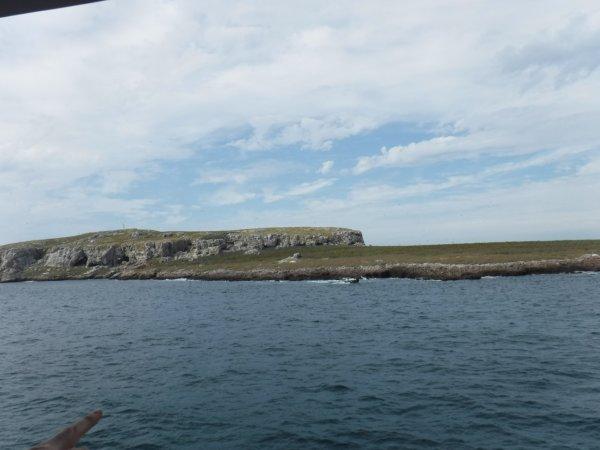 ワールドベンチャーズDreamTripsにセットされていたマリエタス諸島ツアーMARIESTA ECO-DISCOVERRY_島めぐり