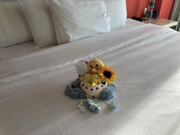 ハードロックホテルバリャルタ_ルームキーパーの心遣い