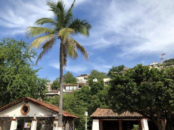 メキシコ・プエルトバジャルタ市内観光ツアースポット_ダウンタウン周辺散策_エリザベス・テイラーが滞在していた家