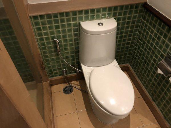 インターコンチネンタルパタヤリゾート_客室キングベッドガーデンビュー_トイレ