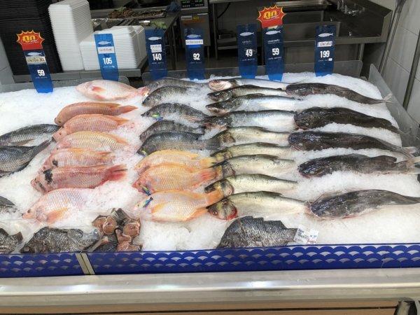 パタヤのスーパーマーケットビッグC_生鮮魚コーナー2