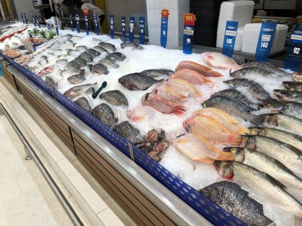パタヤのスーパーマーケットビッグC_生鮮魚コーナー1