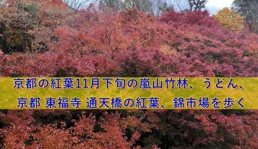 京都の紅葉11月下旬の嵐山竹林、うどん、京都 東福寺 通天橋の紅葉、錦市場を歩く