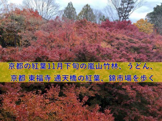 京都東寺の紅葉の絶景写真|50's夫婦たび