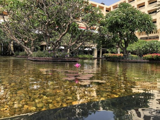 タイ_デュシタニホアヒン_庭池1